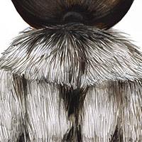 Postcards, Fur and Hair – 2014